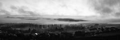 Morning flight (ZeGaby) Tags: avenayvaldor bw blackandwhite champagne clouds fujifilm fujinon27mm landscape marne mist morning nature naturephotography noiretblanc panorama panoramique paysage paysagedechampagne sunrise xt1 france