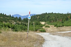 Raxalpe, 19.10.2019 (anuwintschalek) Tags: nikon1 austria niederösterreich alps alpid rax raxalpe mägi mountain berg wandern sügis autumn herbst october 2019 landscape alpen mägimännid latschenkiefern rada path pfad trail