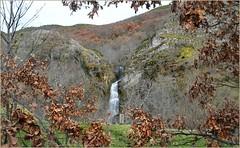 Cascada de Lumajo (Luisa Gila Merino) Tags: leónprovincia otoño montañas bosque cascada monte roble agua laciana lumajo hojas paisaje naturaleza belleza airelibre árboles arbustos