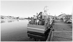 In the Harbor (Rex Block) Tags: mobile sweden cell lg sverige g8 sydkoster thinq kostet autumn bw monochrome coast harbor boat docked bt ekens ekkidee