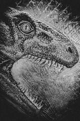 Tyrannosaurus rex (ber52) Tags: tyrannosaurusrex trex museum