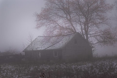 Foggy Barn (markburkhardt) Tags: barn fog winter snow tree sky old antique farm