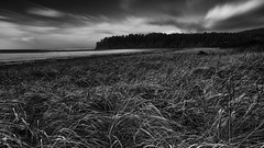 Hobuck | WA (sunrisesoup) Tags: hobuckbeach hobuck wa beach ocean neahbay pacific pacificocean dunes grass clouds bw longexposure sony