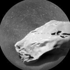 Four Holes in a Rock 2 (sjrankin) Tags: 28november2019 edited nasa mars msl curiosity galecrater closeup holes laser smooth sand dust rock