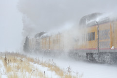 Rolling northward (Moffat Road) Tags: unionpacific up bigboy 4014 steamlocomotive 4884 snow blizzard snowstorm upgreeleysub milepost7 adams dupont denver colorado train railroad co 76thstreet passengercars blowingsnow steam derby