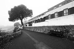 esplanade (chrisinplymouth) Tags: esplanade walkway path seaside devilspoint firestonebay tree perspective wideangle black white monochrome plain plymouth devon england uk city xg diagx diagonal explored inexplore