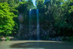 Milaa Milaa Falls (agasfer) Tags: 2019 australia pentax k3 sigma1020 waterfalls