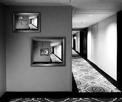corridor (amazingstoker) Tags: light shepherds soulless patterned fame low carpet corridor empty vanishing point bush green grain hotel london dorsett droste recursion recursive