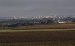 Nîmes sous les nuages ...- BFIM9325 (6franc6) Tags: occitanie languedoc gard 30 petitecamargue novembre 2019 6franc6 vélo kalkoff vae