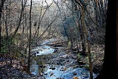 Sharon Creek (durand clark) Tags: woods creek rocks gorge trees park sharonwoodspark southwest ohio southwestohio hamiltoncountyparks hike water nikonz6mirrorless nikon35mmf18 fall