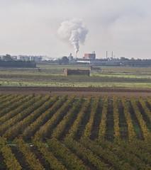 ZI à Vauvert ... ça fume plein pot ! - BFIM9323 (6franc6) Tags: occitanie languedoc gard 30 petitecamargue novembre 2019 6franc6 vélo kalkoff vae