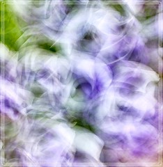 Abstract in mauve, white and green (John Hewitt 7) Tags: luminosity7 launceston tasmania nikond850 intentionalcameramovement deliberateblurring artphotography abstract colour movement light impressionistic