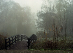 img743 (Ernst-Jan de Vries) Tags: fujifilm400h fuji mamiya mediumformat mittelformat middenformaat film analoog analogue analog c41 colournegative scan epson4490 negative negatief 120 645 filmisnotdead ishootfilm fog foggy mist misty cold autumn fall november