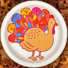 Happy Thanksgiving (Timothy Valentine) Tags: 1119 paperplate turkey thanksgiving foliage home 2019 holiday squaredcircle eastbridgewater massachusetts unitedstatesofamerica