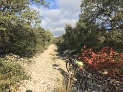 Dur, dur ...mais le soleil est là !!! NB, je suis monté à pied à côté du vélo ! (6franc6) Tags: occitanie languedoc gard 30 milhaud novembre 2019 6franc6 vélo kalkoff vae langlade caveirac