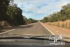 Open roads (Jeff Higgott (Sequella.co.uk)) Tags: jeffhiggott jeffhiggottphotography speedway brasil brazil wildlife nature tropical animal