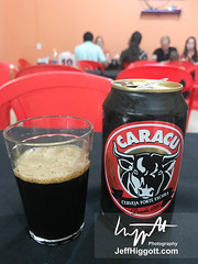 Caracu beer (Jeff Higgott (Sequella.co.uk)) Tags: jeffhiggott jeffhiggottphotography speedway brasil brazil wildlife nature tropical animal