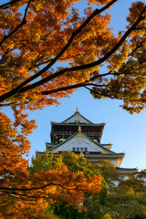 Behind the Autumn Leaves (- Etude -) Tags: japan osaka autmn castle colors maples trees leaves
