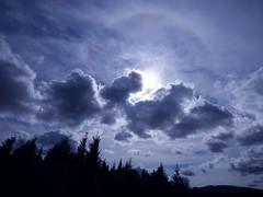 Sieht noch jemand den Hund ? / Does anyone else see the dog? (ursula.valtiner) Tags: himmel sky wolken clouds hund dog pareidolia rax raxalpe niederösterreich loweraustria austria autriche österreich