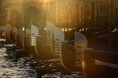 ferro di prua (°andre²a°) Tags: canon canoneosr venice gondola water sunset sunlight italy gold brown reflection