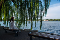 Thoughtful (E. Aguedo) Tags: thoughful staring qianhailake beihaipark beijing china asia tree willow bench water ngc traveltourism person sitting day nature relaxation sky scene