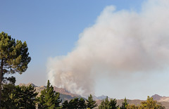IMG_3479 (francois f swanepoel) Tags: elgin fire globalwarming grabouw hottentotshollandberge mountains pollution smoke westerncape