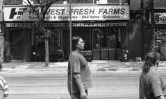 Fresh (Time Share) Tags: leicam3 leica m3 rangefinder konicamhexanon50mmf2 aristapremium400300isod769mins trix d76 aristapremium streetphotography street film 35mmfilm filmphotography filmcamera inspiredeye streetlife engagedobserver momentsoftruth sociallandscape