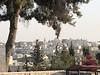 Bethlehem, Palestine 2019