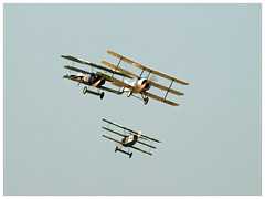 Fokker DR1 & Sopwith triplanes. (Aerofossile2012) Tags: avion aircraft aviation meeting airshow laferté 2018 dogfight war ww1 wwi 1418 fokker sopwith triplanes
