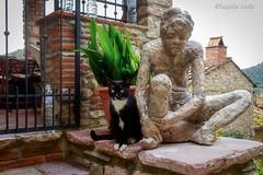I gatti conquisteranno il mondo.- Cats will conquer the world. (Eugenio GV Costa) Tags: approvato gatto gatti cat cats animal animali domesrici statua statue posa posing