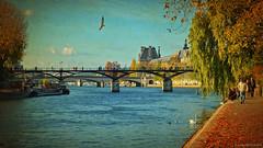 Paris in the Fall... ༽ ˳♪⁎˚♫ (Mona Zimba) Tags: paris river seine france autumn walk pontdesarts bridge city artistsfree art saariysqualitypictures visualart