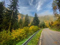 Unterwegs in den Nebel im Albtal bei der Teufelsküche(ungeplanter Schnappschuss)