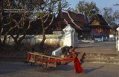 Luang Phrabang, Wat Xieng Thong (blauepics) Tags: southeast asia südostasien laos lao luang prabang phrabang city stadt wat xieng thong gold temple tempel buddhism buddhismus religion architecture architektur building gebäude history geschichte unesco world heritage site weltkulturerbe boy junge monch mönch novize