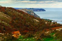 Paisaje otoñal (Carpetovetón) Tags: hayedo hayas otoño cerredo parapastores castrourdiales colores otoñal árbol bosque sonya6000 cantabria españa
