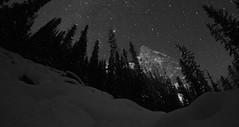 IMG_1656 (friesenmulholland) Tags: stars night sky dark midnight nightsky starry starrynight moon darkness galaxy milkyway solar system astronomy