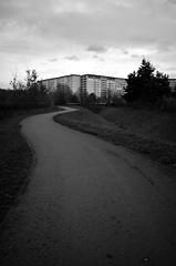 beim Hechtgraben (tom-schulz) Tags: ricoh grii monochrom bw sw berlin thomasschulz weg häuserblock himmel wolken