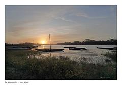 La Possonnière au levé du jour (Bruno-photos2013) Tags: loire maineetloire fleuve ligérien paysageligérien barque platedeloire leverdujour contrejour possonnière paysage paysdeloire landscape