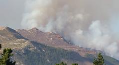 IMG_3478 (francois f swanepoel) Tags: elgin fire globalwarming grabouw hottentotshollandberge mountains pollution smoke westerncape