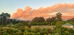 IMG_E2322 (francois f swanepoel) Tags: clouds elgin fire globalwarming grabouw hottentotshollandberge iphonexsmax mountains pollution scenics smoke westerncape