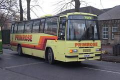 Primrose Coaches C39CWT (yorkcoach2) Tags: dewsbury dewsburybusmuseum ravensthorpe northrd plaxton leylandtiger c39cwt 39 westriding westriding39 openday primrosecoaches