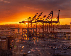 Sunset at Seattle water front !! (pankaj.anand) Tags: 2019 details sunset landscape water waterbody sunsetoversea puget pugetsoundwater pugetsound dock dockyard sony sonya7iii colors goldenhour