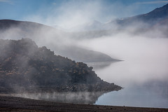 Giving Thanks 3 (Jeff Sullivan (www.JeffSullivanPhotography.com)) Tags: morning mist fall topaz lake gardnerville douglascounty nevada monocounty california usa eastern sierra landscape nature travel photography canon eos 5d mark iv ef70200mm f4 is l series photo copyright 2019 jeff sullivan november topazlakewintergardnervilledouglas countynevadamono coutopaz winter