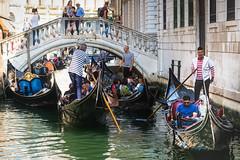 Venetian Traffic Jam (Fairy_Nuff (piczology.com)) Tags: venice canal welshot gondola gondolier traffic jam bridge