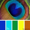 Сочетание голубого цвета 1