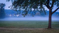 Ottensoos im Nebel kurz vor Sonnenaufgang | IMGP7116 (horschte68) Tags: ottensoos sonnenaufgang sunrise nebel fog fogfoggytreelandscape dawn morgendämmerung tagesanbruch daybreak dämmerlicht zwielicht twilight composition view pointofview herbst spätherbst lateautumn