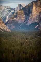 Running on Empty (Thomas Hawk) Tags: america california nationalpark usa unitedstates unitedstatesofamerica yosemite yosemitevalley fav10 fav25 fav50
