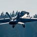 VAQ-129 VIKINGS' CAG BIRD RISING FROM OLF