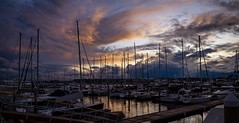 Thanksgiving (explored) (Splatito8127) Tags: thanksgiving yacht beauty boats water sunset