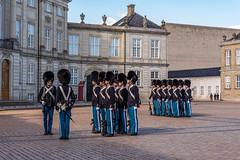 Changing the guard in Copenaghen (Brambilla Simone Fotografo) Tags: city building castle army capital ceremony changing change attraction bearskin amalienborg hat copenhagen denmark europe gun king guard culture historic danish historical guards copenaghen life people man military rifle kingdom landmark palace parade queen residence protection rosenborg tourism square soldier uniform royal security tourist weapon soldiers tradition scandinavia scandinavian danimarca traditionall hovedstaden