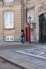 Changing the guard in Copenaghen (Brambilla Simone Fotografo) Tags: amalienborg army attraction bearskin building capital castle ceremony change changing city copenaghen copenhagen culture danish denmark europe guard guards gun hat historic historical king kingdom landmark life man military palace parade people protection queen residence rifle rosenborg royal scandinavia scandinavian security soldier soldiers square tourism tourist tradition traditionall uniform weapon hovedstaden danimarca